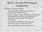 bgsu s written ppe program introduction12