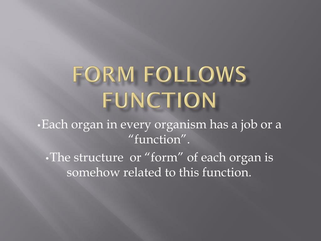 form follows function l.