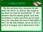 1 john 3 16 18