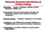 molecular dynamics simulations of protein folding