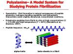 polyalanine a model system for studying protein fibrillization