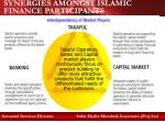 synergies amongst islamic finance participants
