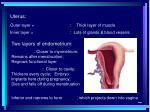 uterus20