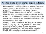 potential multipurpose energy crops in indonesia