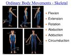 ordinary body movements skeletal