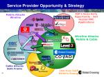 service provider opportunity strategy