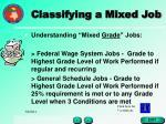 classifying a mixed job28