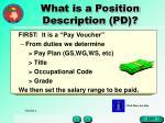 what is a position description pd