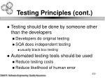 testing principles cont