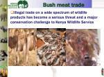 bush meat trade