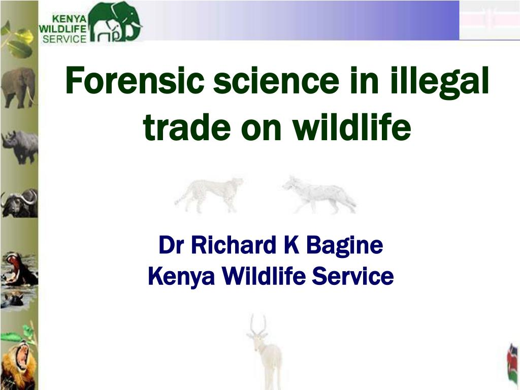 forensic science in ille g al trade on wildlife l.