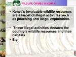 wildlife crimes in kenya