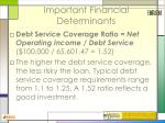 important financial determinants42