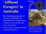 affluent foragers in australia