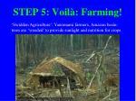 step 5 voil farming
