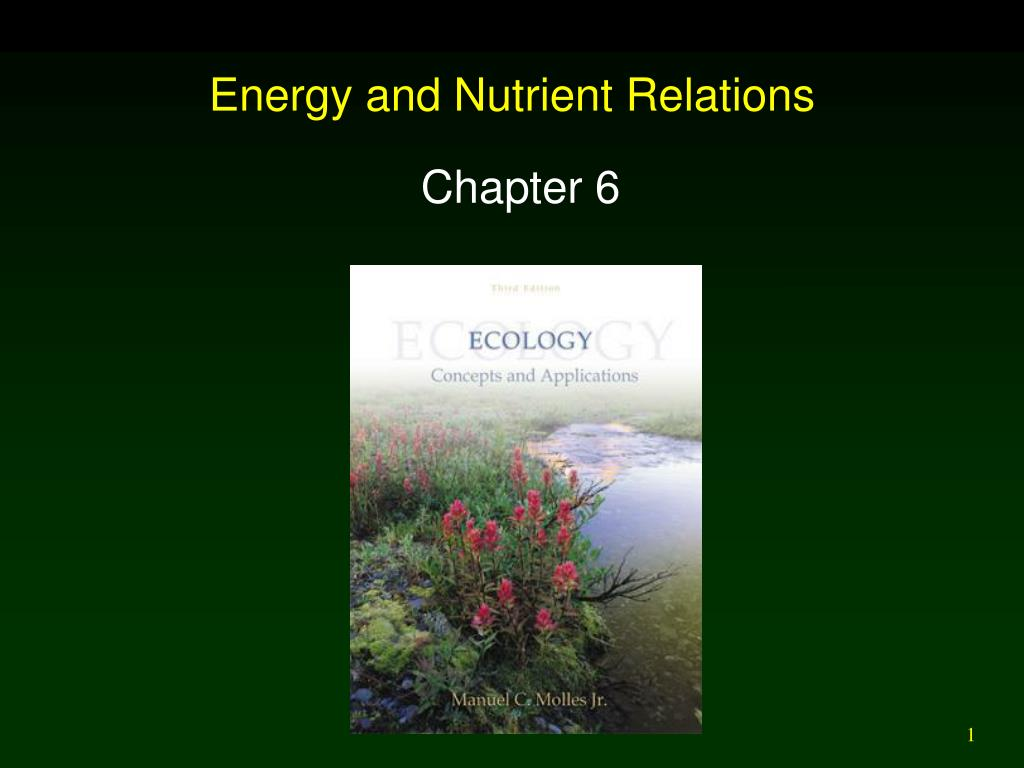 energy and nutrient relations l.