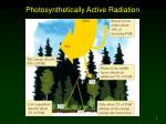 photosynthetically active radiation