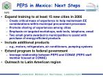 peps in mexico next steps