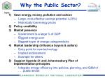 why the public sector