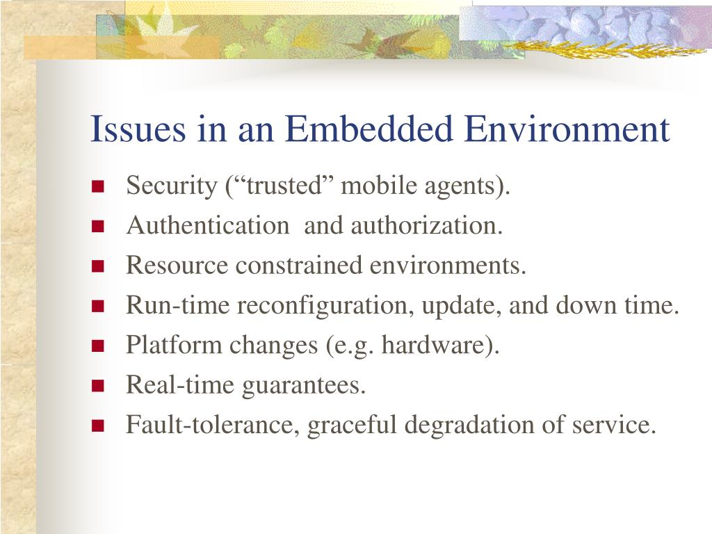 Issues in an Embedded Environment