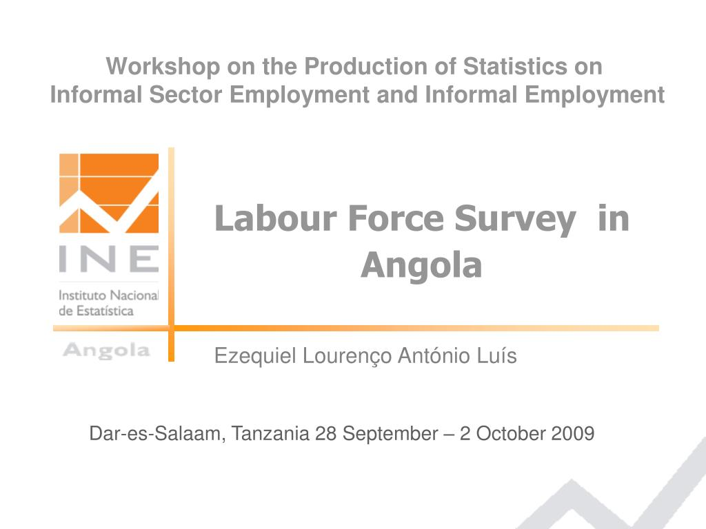 workshop on the production of statistics on informal sector employment and informal employment l.