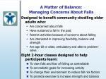 a matter of balance managing concerns about falls