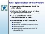 falls epidemiology of the problem