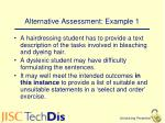 alternative assessment example 1