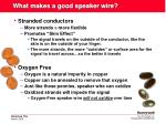 what makes a good speaker wire