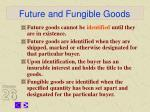 future and fungible goods