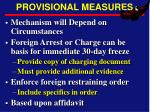 provisional measures
