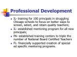 professional development17
