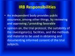 irb responsibilities