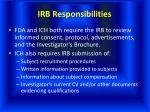 irb responsibilities28