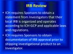 irb review