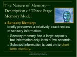 the nature of memory description of three stage memory model