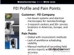 fei profile and pain points