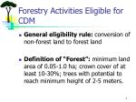 forestry activities eligible for cdm
