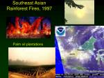 southeast asian rainforest fires 1997