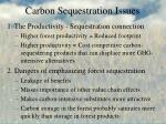 carbon sequestration issues
