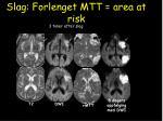 slag forlenget mtt area at risk