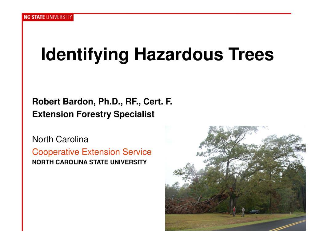 identifying hazardous trees l.