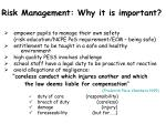 risk management why it is important