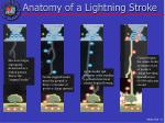 anatomy of a lightning stroke