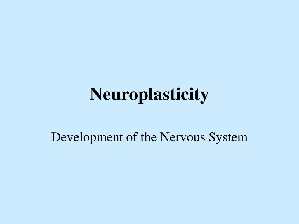 neuroplasticity l.