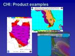 chi product examples