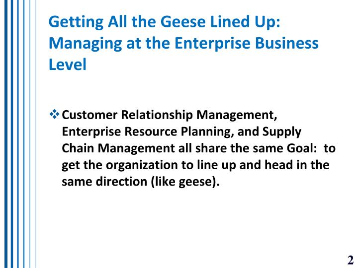 Getting all the geese lined up managing at the enterprise business level