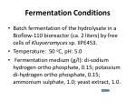 fermentation conditions
