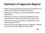 hydrolysis of sugarcane bagasse