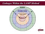 linkages within the lamp method